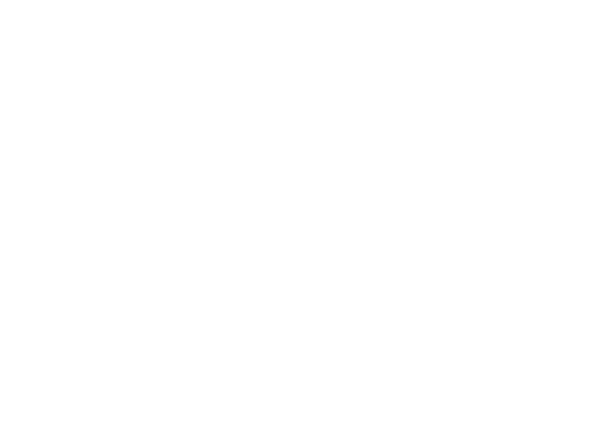Mirabelli Corporation